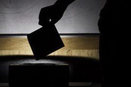 Referendum Blog: June 11